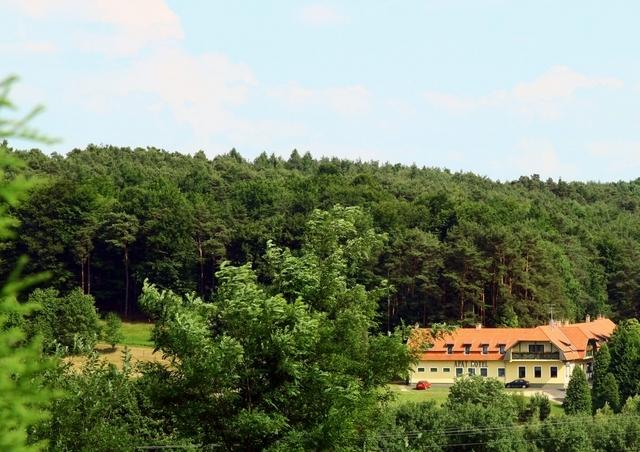 Augusztus 20. az őrségi és vendvidéki erdők ölelésében - Apát Hotel és Étterem - Apátistvánfalva - 9 548Ft/fő/éj + 503 pont/fő/éj