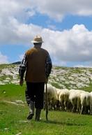 Országos Gulyásverseny és Pásztortalálkozó
